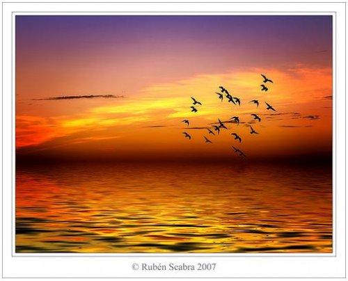 фотографии заката: