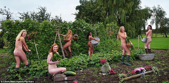 фото голая жирная баба соберает на поле ягоды