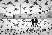 Фотография Александр Петросян